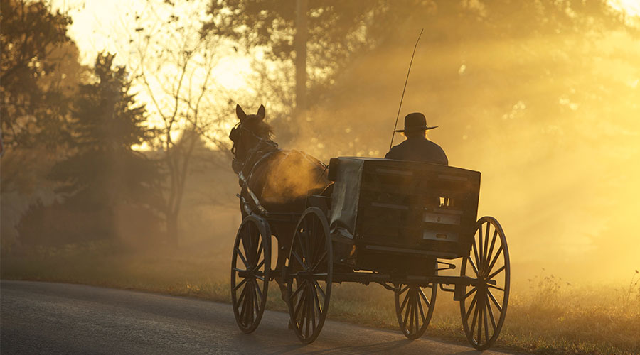 What Is Amish Fiction Feature